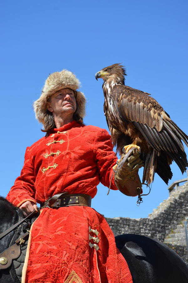 PASS PROVINS + SPECTACLE LES AIGLES