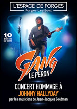 Affiche Concert hommage a johnny hallyday