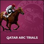Affiche Qatar arc trials