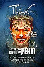 Affiche Les etoiles du cirque de pekin
