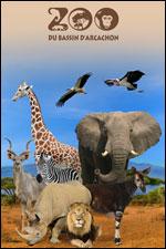 Affiche Zoo du bassin d'arcachon