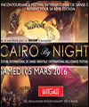 R�servation FESTIVAL CAIRO BY NIGHT 6