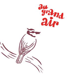 Plus d'infos sur l'évènement AU GRAND AIR