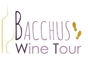 BACCHUS WINE TOUR Sous la colonne des Girondins visite guidée