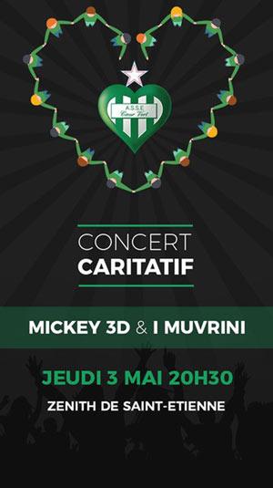 MICKEY 3D - I MUVRINI Zénith concert de rock