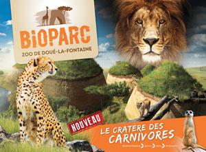 BIOPARC ZOO DE DOUÉ-LA-FONTAINE BIOPARC ZOO DE DOUE LA FONTAINE visite de parc animalier