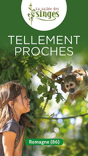 LA VALLÉE DES SINGES La Vallée des singes visite de parc animalier
