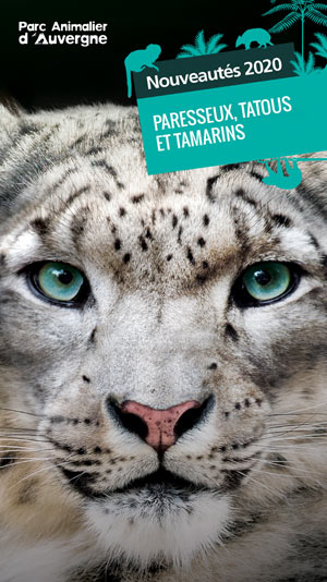 PARC ANIMALIER D'AUVERGNE Parc Animalier d'Auvergne visite de parc animalier
