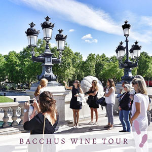 BACCHUS WINE TOUR PLACE DES QUINCONCES voyage, excursion