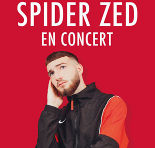 Rap/Hip-hop/Slam SPIDER Z GRENOBLE