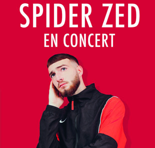 Rap/Hip-hop/Slam SPIDER ZED PARIS