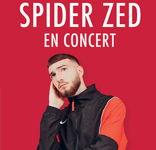 Rap/Hip-hop/Slam SPIDER ZED NANTES