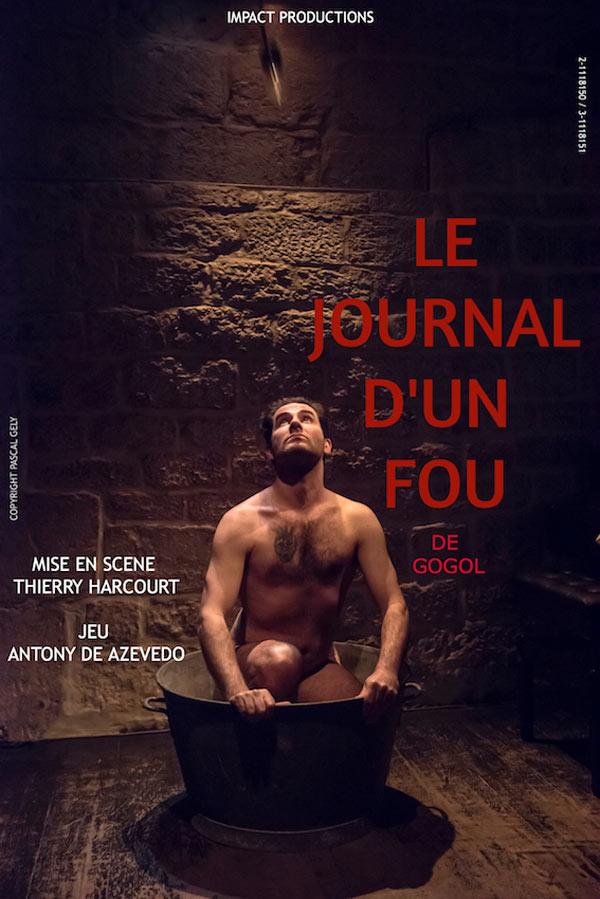 LE JOURNAL D'UN FOU